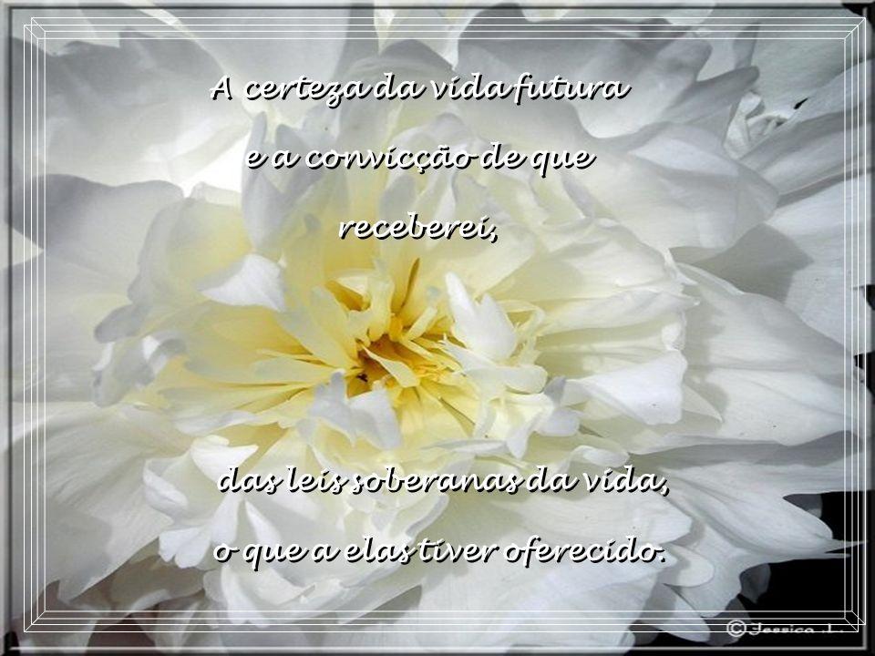 A paz que hoje trago em meu peito é a confiança naquele que criou e governa o mundo...