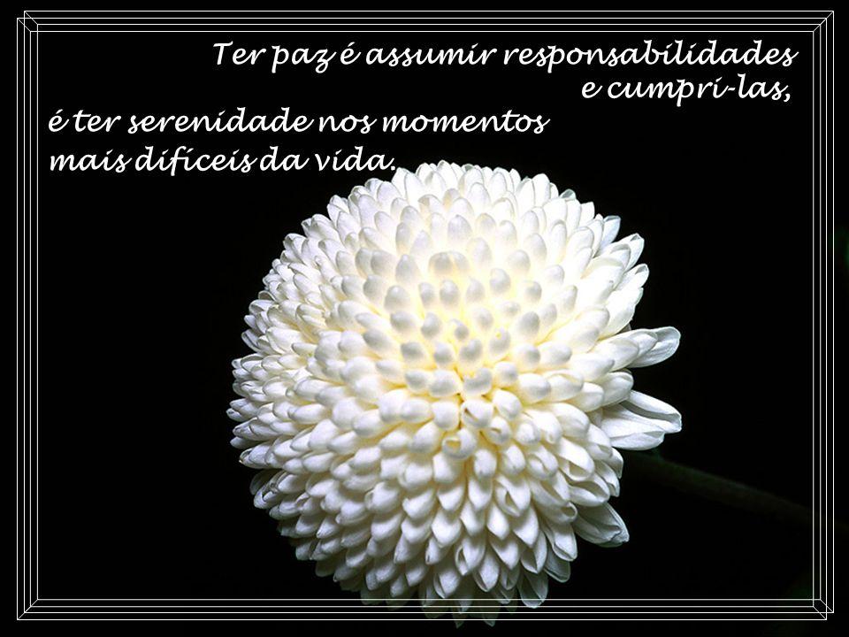Ter paz é assumir responsabilidades e cumpri-las, é ter serenidade nos momentos mais difíceis da vida.