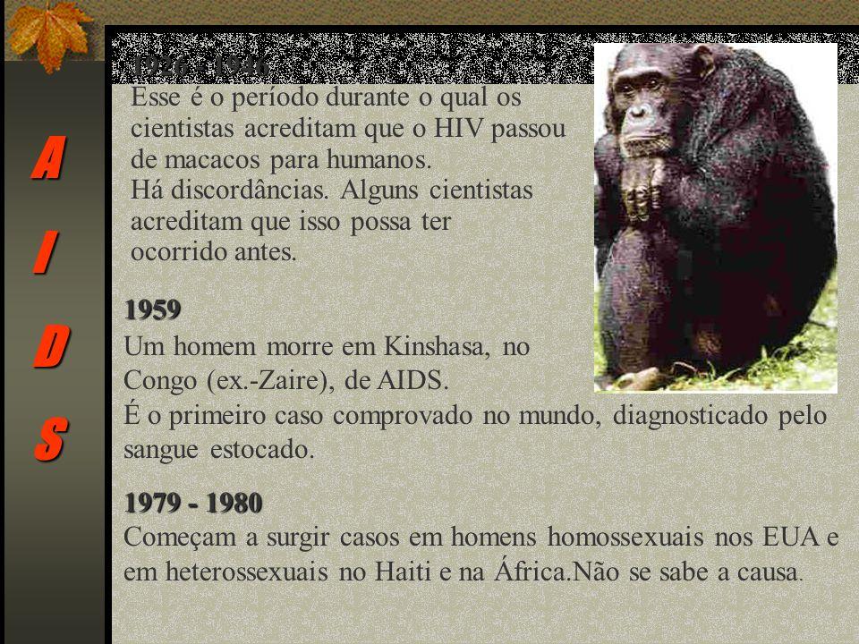 AIDS 1926 - 1946 Esse é o período durante o qual os cientistas acreditam que o HIV passou de macacos para humanos.