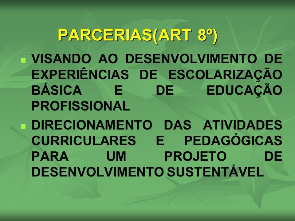 VISANDO AO DESENVOLVIMENTO DE EXPERIÊNCIAS DE ESCOLARIZAÇÃO BÁSICA E DE EDUCAÇÃO PROFISSIONAL DIRECIONAMENTO DAS ATIVIDADES CURRICULARES E PEDAGÓGICAS
