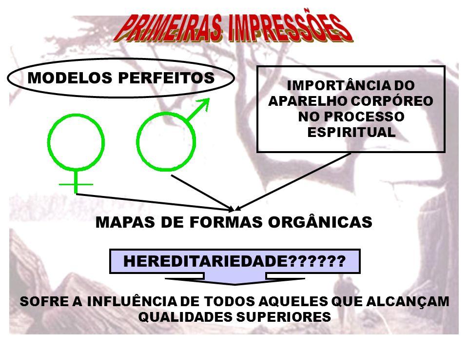MODELOS PERFEITOS IMPORTÂNCIA DO APARELHO CORPÓREO NO PROCESSO ESPIRITUAL MAPAS DE FORMAS ORGÂNICAS HEREDITARIEDADE?????? SOFRE A INFLUÊNCIA DE TODOS