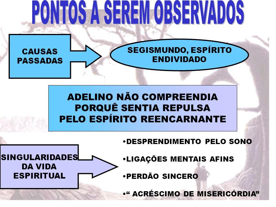 CAUSAS PASSADAS SEGISMUNDO, ESPÍRITO ENDIVIDADO ADELINO NÃO COMPREENDIA PORQUÊ SENTIA REPULSA PELO ESPÍRITO REENCARNANTE SINGULARIDADES DA VIDA ESPIRI