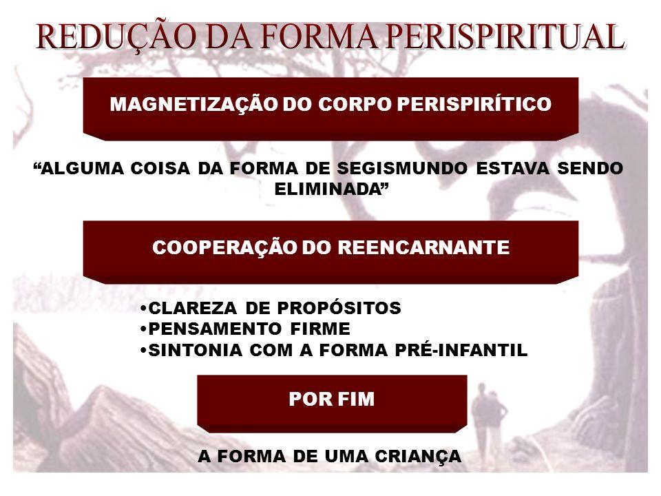 MAGNETIZAÇÃO DO CORPO PERISPIRÍTICO ALGUMA COISA DA FORMA DE SEGISMUNDO ESTAVA SENDO ELIMINADA COOPERAÇÃO DO REENCARNANTE CLAREZA DE PROPÓSITOS PENSAM
