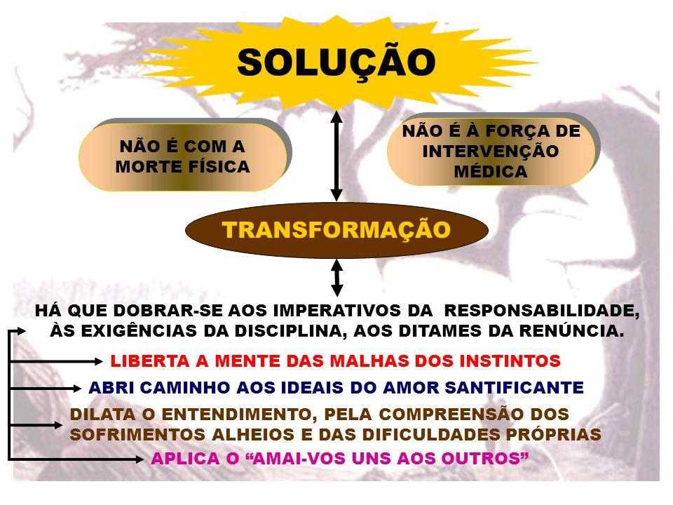 TRANSCURSO DOS DIAS FORMAVA-SE O NOVO CORPO DE SEGISMUNDO CÉLULA POE CÉLULA DENTRO DUM PLANO SIMPLES E INTELIGENTE FORMAÇÃO DOS ÓRGÃOS CARINHO NA CONSTRUÇÃO DA NOVA MORADA VERDADEIRA REVELAÇÃO DIVINA A PRIMEIRA CÉLULA DA FECUNDAÇÃO ESTAVA TRANSFORMADA NUM VERDADEIRO MUNDO DE ORGANIZAÇÃO ATIVA E SÁBIA