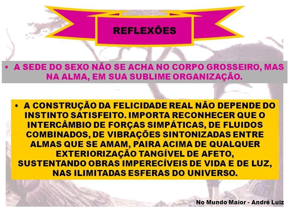 MAGNETIZAÇÃO DO CORPO PERISPIRÍTICO ALGUMA COISA DA FORMA DE SEGISMUNDO ESTAVA SENDO ELIMINADA COOPERAÇÃO DO REENCARNANTE CLAREZA DE PROPÓSITOS PENSAMENTO FIRME SINTONIA COM A FORMA PRÉ-INFANTIL POR FIM A FORMA DE UMA CRIANÇA