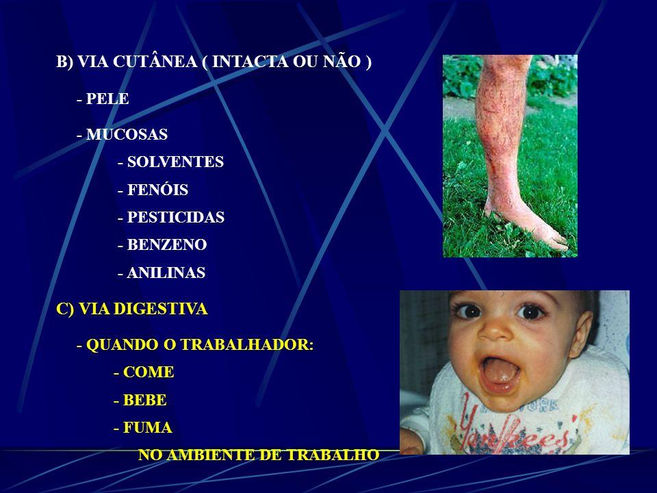 B) VIA CUTÂNEA ( INTACTA OU NÃO ) - PELE - MUCOSAS - SOLVENTES - FENÓIS - PESTICIDAS - BENZENO - ANILINAS C) VIA DIGESTIVA - QUANDO O TRABALHADOR: - C