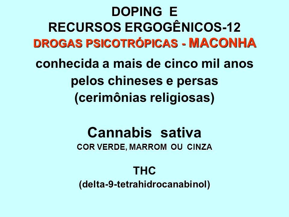 DOPING E RECURSOS ERGOGÊNICOS-12 DROGAS PSICOTRÓPICAS - MACONHA conhecida a mais de cinco mil anos pelos chineses e persas (cerimônias religiosas) Can