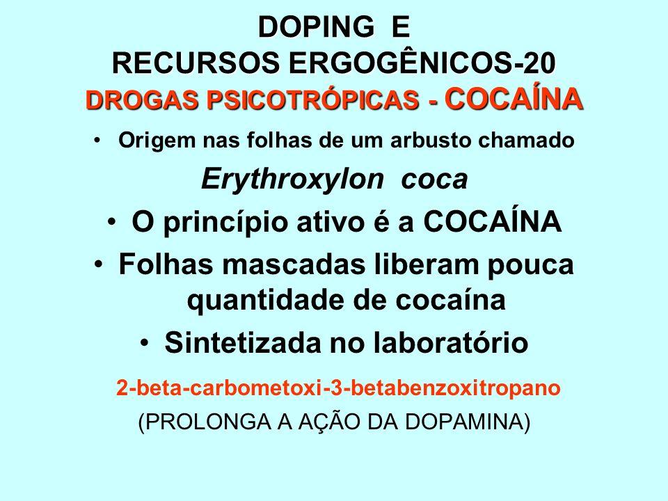 DOPING E RECURSOS ERGOGÊNICOS-20 DROGAS PSICOTRÓPICAS - COCAÍNA Origem nas folhas de um arbusto chamado Erythroxylon coca O princípio ativo é a COCAÍN