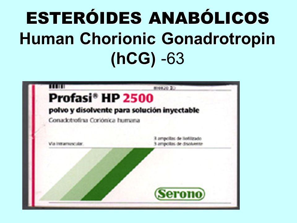 ESTERÓIDES ANABÓLICOS Human Chorionic Gonadrotropin (hCG) ESTERÓIDES ANABÓLICOS Human Chorionic Gonadrotropin (hCG) -63