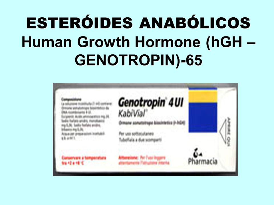 ESTERÓIDES ANABÓLICOS Human Growth Hormone (hGH – GENOTROPIN)-65