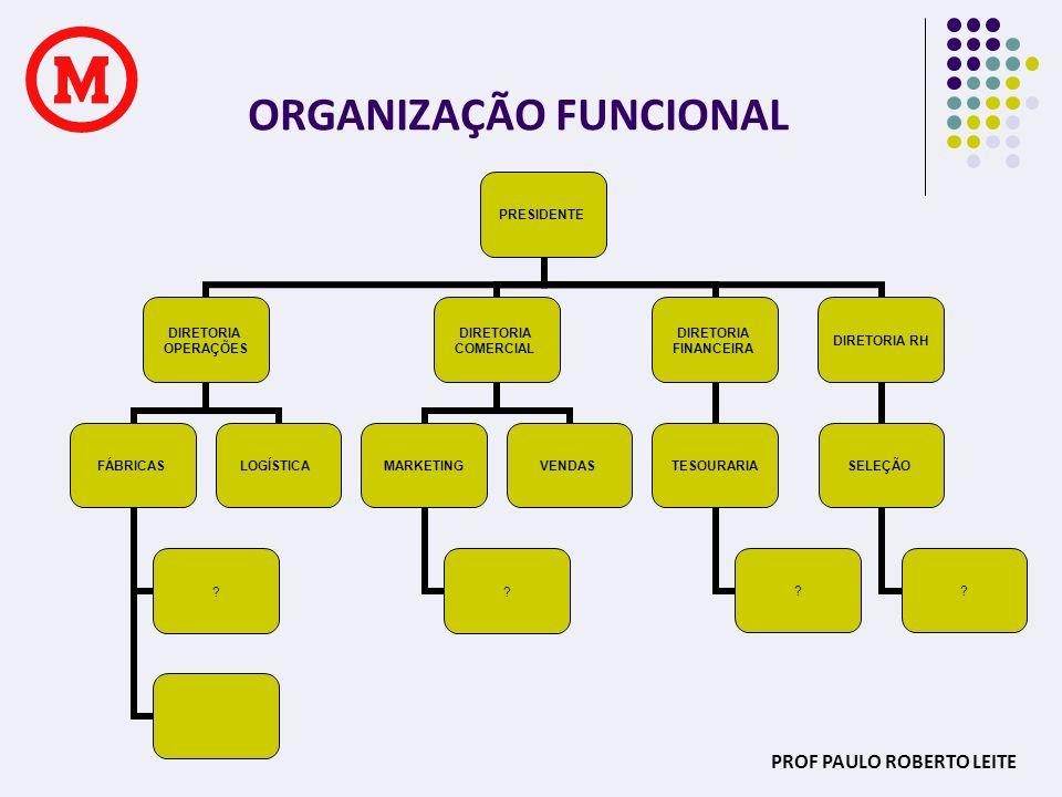 PROF PAULO ROBERTO LEITE ORGANIZAÇÃO FUNCIONAL