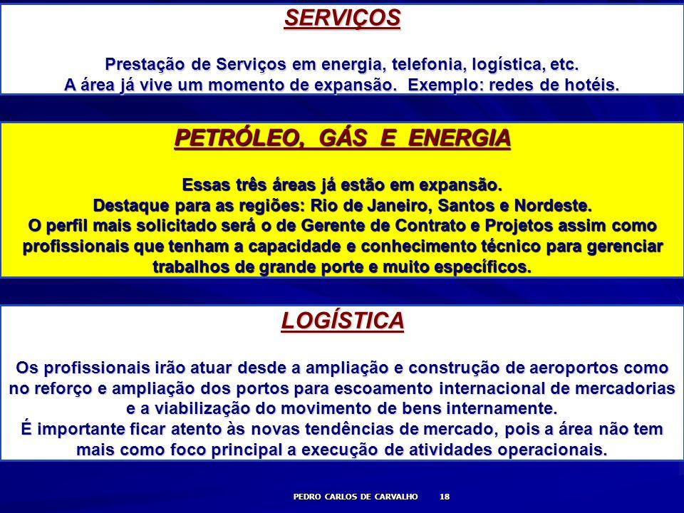 PEDRO CARLOS DE CARVALHO 18 SERVIÇOS Prestação de Serviços em energia, telefonia, logística, etc. A área já vive um momento de expansão. Exemplo: rede