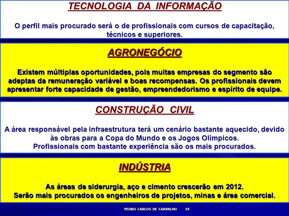PEDRO CARLOS DE CARVALHO 19 TECNOLOGIA DA INFORMAÇÃO O perfil mais procurado será o de profissionais com cursos de capacitação, técnicos e superiores.