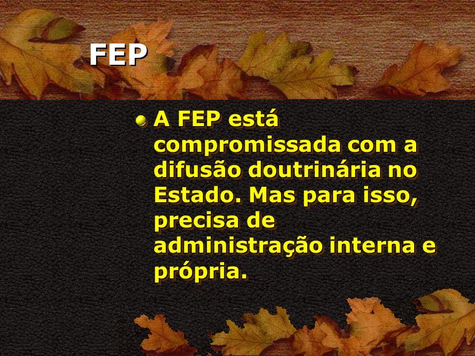 FEP Falar em FEP é falar de toda a sua estrutura organizacional inclusive a URE.