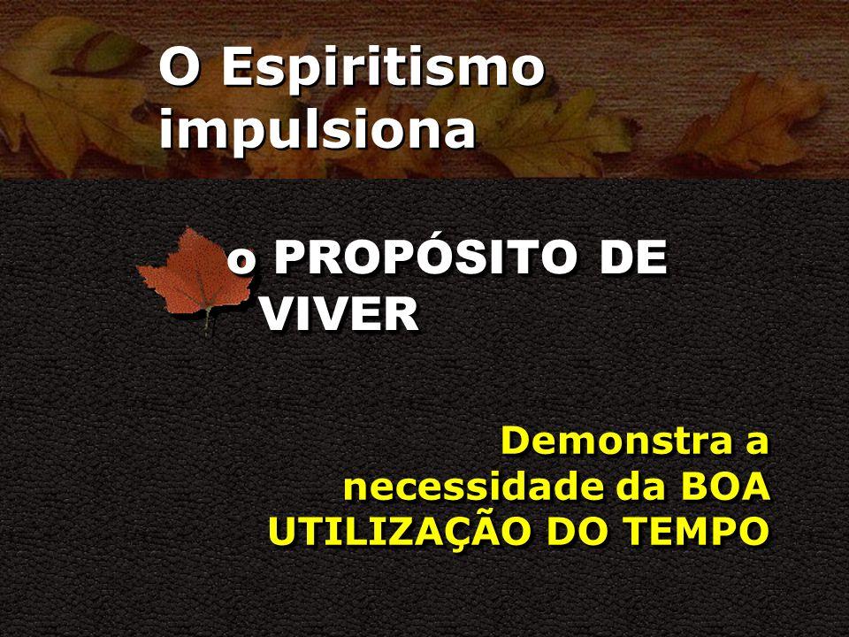 O Espiritismo impulsiona a VISÃO DE CONJUNTO Possibilita CONHECIMENTOS SUPERIORES