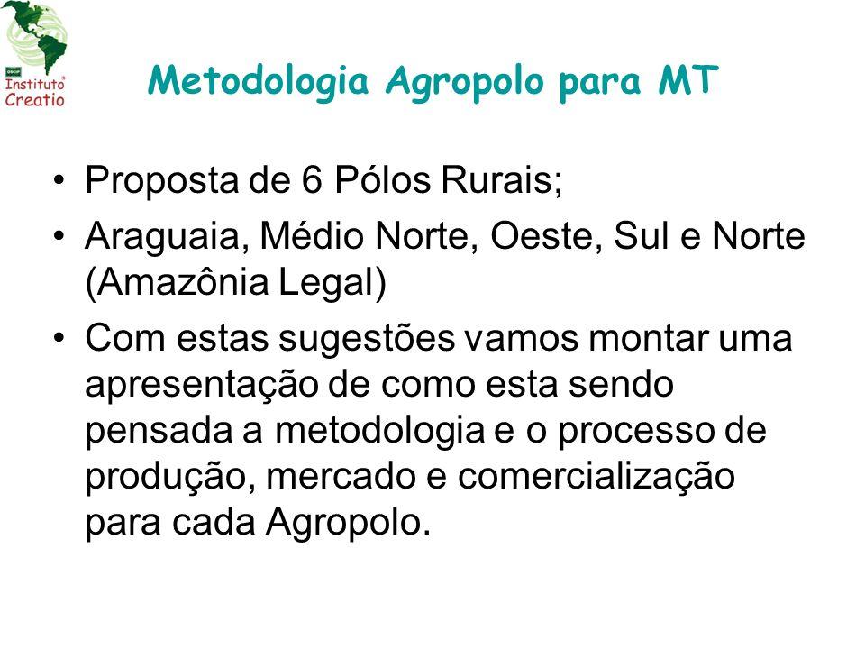 Metodologia Agropolo para MT Proposta de 6 Pólos Rurais; Araguaia, Médio Norte, Oeste, Sul e Norte (Amazônia Legal) Com estas sugestões vamos montar u