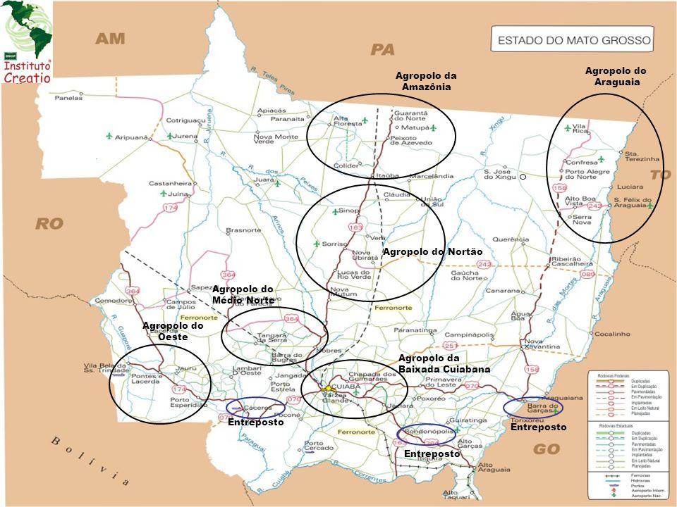Veja Exemplo dos Agropolos Araguaia e Médio Norte Apenas uma prospecção de ligação em rede, em um processo endógeno e exógeno.