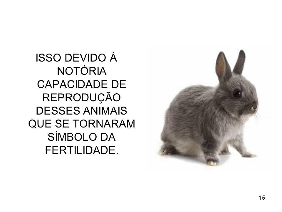 15 ISSO DEVIDO À NOTÓRIA CAPACIDADE DE REPRODUÇÃO DESSES ANIMAIS QUE SE TORNARAM SÍMBOLO DA FERTILIDADE.
