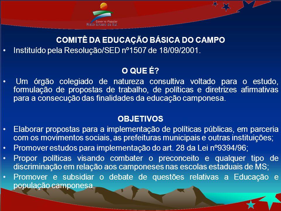 COMITÊ DA EDUCAÇÃO BÁSICA DO CAMPO Instituído pela Resolução/SED nº1507 de 18/09/2001. O QUE É? Um órgão colegiado de natureza consultiva voltado para
