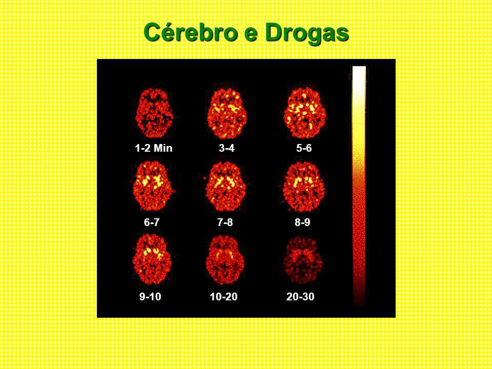 Cérebro e Drogas 1-2 Min3-45-6 6-77-88-9 9-1010-2020-30