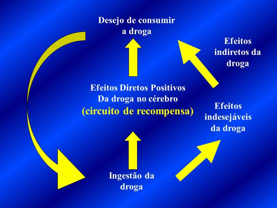 Dependência Química Síndrome de abstinência ou privação Tolerância Toxicidade Neuropsicológica reversível / irreversível Auto-administração Ação praze