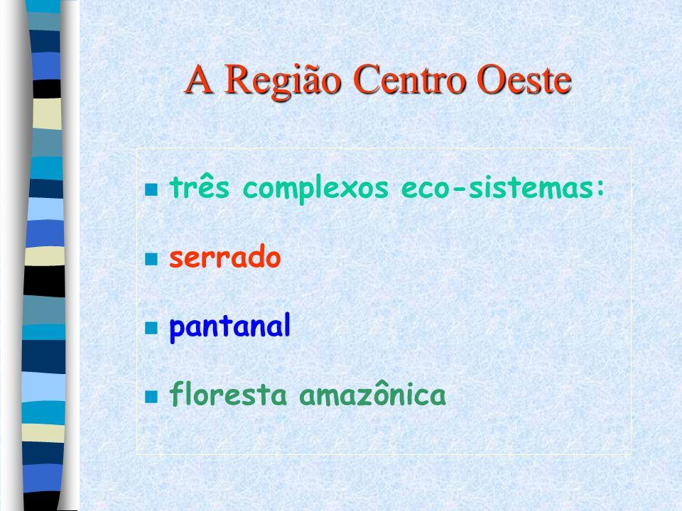 A Região Centro Oeste n três complexos eco-sistemas: n serrado n pantanal n floresta amazônica