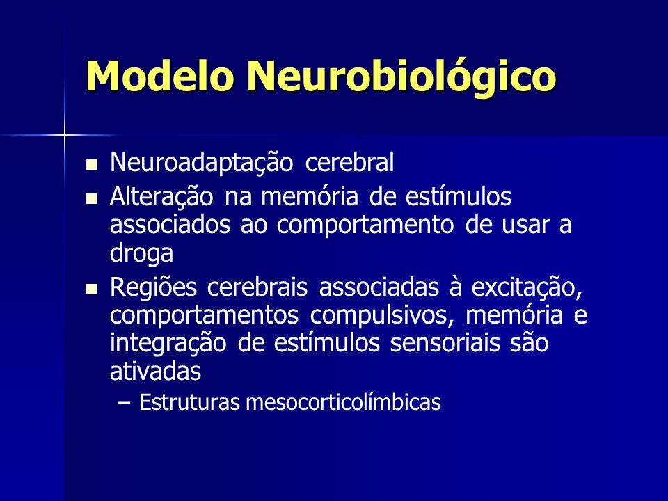 Modelo Neurobiológico Neuroadaptação cerebral Alteração na memória de estímulos associados ao comportamento de usar a droga Regiões cerebrais associad