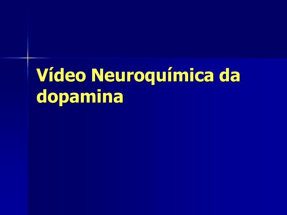 Vídeo Neuroquímica da dopamina