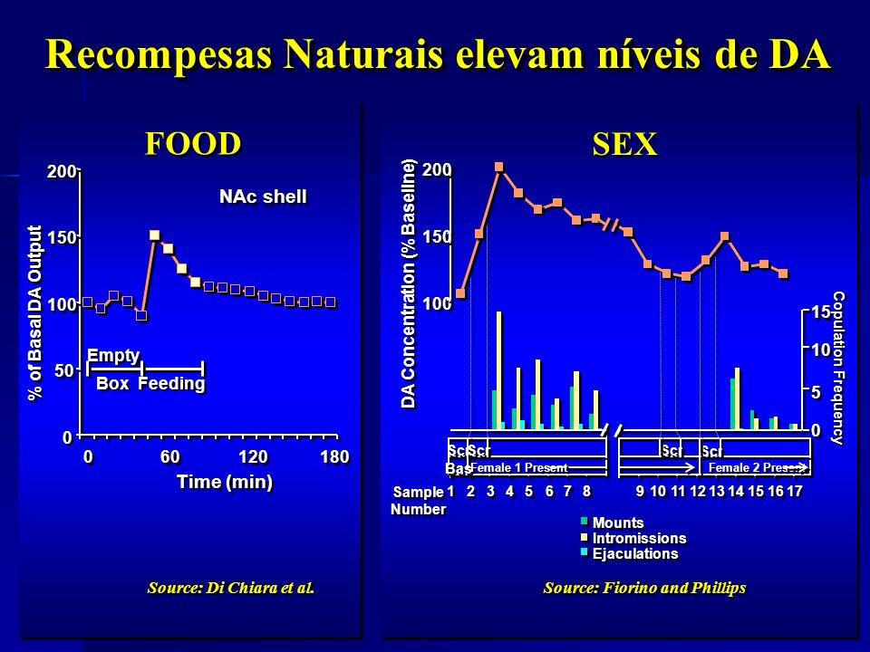 0 0 50 100 150 200 0 0 60 120 180 Time (min) % of Basal DA Output NAc shell Empty Box Feeding Source: Di Chiara et al. FOOD Recompesas Naturais elevam