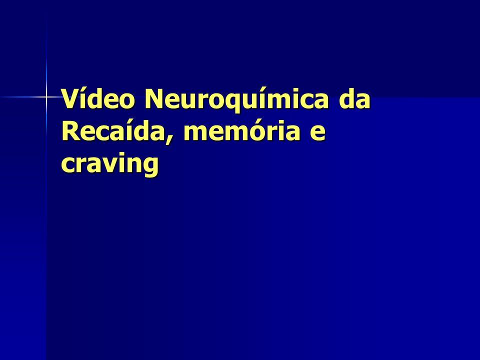 Vídeo Neuroquímica da Recaída, memória e craving