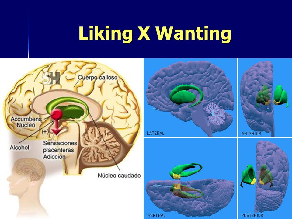 Liking X Wanting