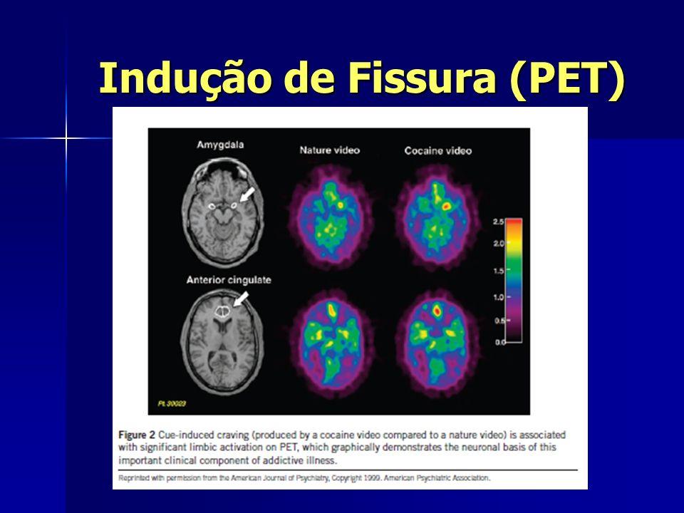 Indução de Fissura (PET)