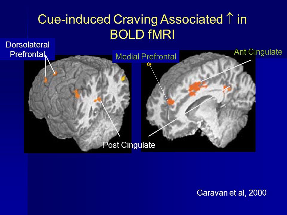 Garavan et al, 2000 Cue-induced Craving Associated in BOLD fMRI Dorsolateral Prefrontal Medial Prefrontal Ant Cingulate Post Cingulate