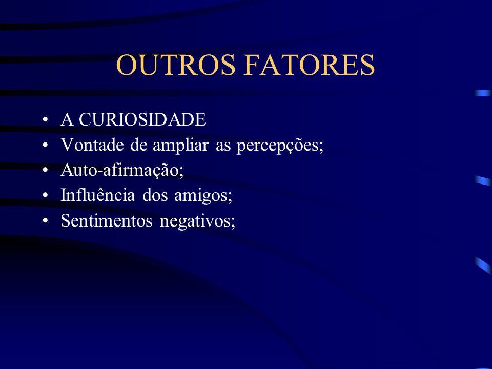 OUTROS FATORES A CURIOSIDADE Vontade de ampliar as percepções; Auto-afirmação; Influência dos amigos; Sentimentos negativos;