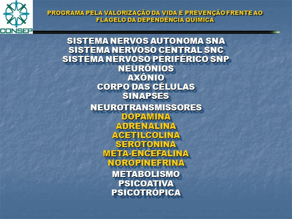 PROGRAMA PELA VALORIZAÇÃO DA VIDA E PREVENÇÃO FRENTE AO FLAGELO DA DEPENDÊNCIA QUÍMICA DEPENDÊNCIA DAS DROGAS DEFINIÇÃODEFINIÇÃO DEPENDÊNCIA FÍSICA DEPENDÊNCIA PSICOLÓGICA ABSTINÊNCIAABSTINÊNCIA