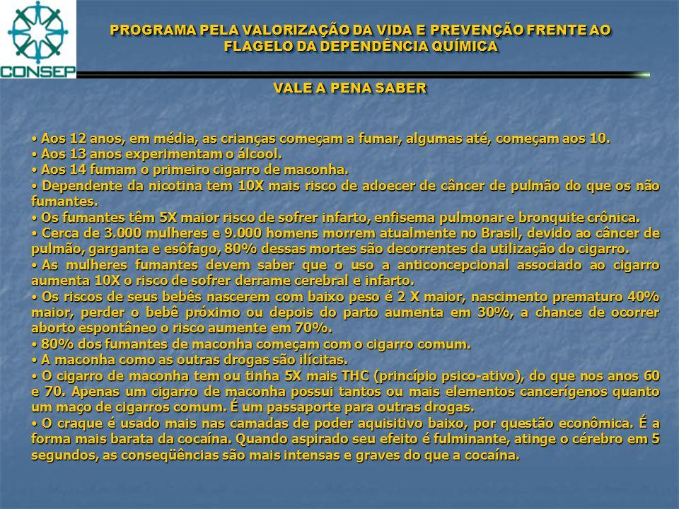 PROGRAMA PELA VALORIZAÇÃO DA VIDA E PREVENÇÃO FRENTE AO FLAGELO DA DEPENDÊNCIA QUÍMICA FASES DO USUÁRIO 1ª FASE 2ª FASE 3ª FASE 4ª FASE