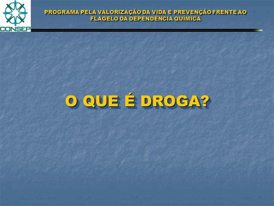 PROGRAMA PELA VALORIZAÇÃO DA VIDA E PREVENÇÃO FRENTE AO FLAGELO DA DEPENDÊNCIA QUÍMICA DEFINIÇÃODEFINIÇÃO