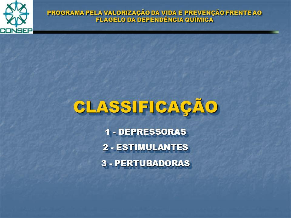 PROGRAMA PELA VALORIZAÇÃO DA VIDA E PREVENÇÃO FRENTE AO FLAGELO DA DEPENDÊNCIA QUÍMICA EFEITOS E CONSEQÜÊNCIAS