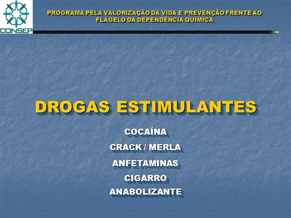 PROGRAMA PELA VALORIZAÇÃO DA VIDA E PREVENÇÃO FRENTE AO FLAGELO DA DEPENDÊNCIA QUÍMICA DROGAS PERTUBADORAS LSDLSD PCPPCP MACONHAMACONHA HAXIXEHAXIXE ECSTASYECSTASY