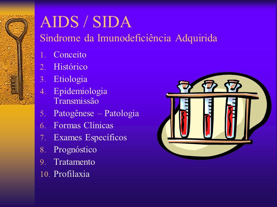 AIDS / SIDA Síndrome da Imunodeficiência Adquirida 10.