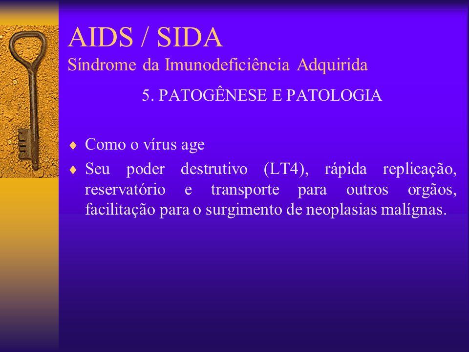 AIDS / SIDA Síndrome da Imunodeficiência Adquirida 5.