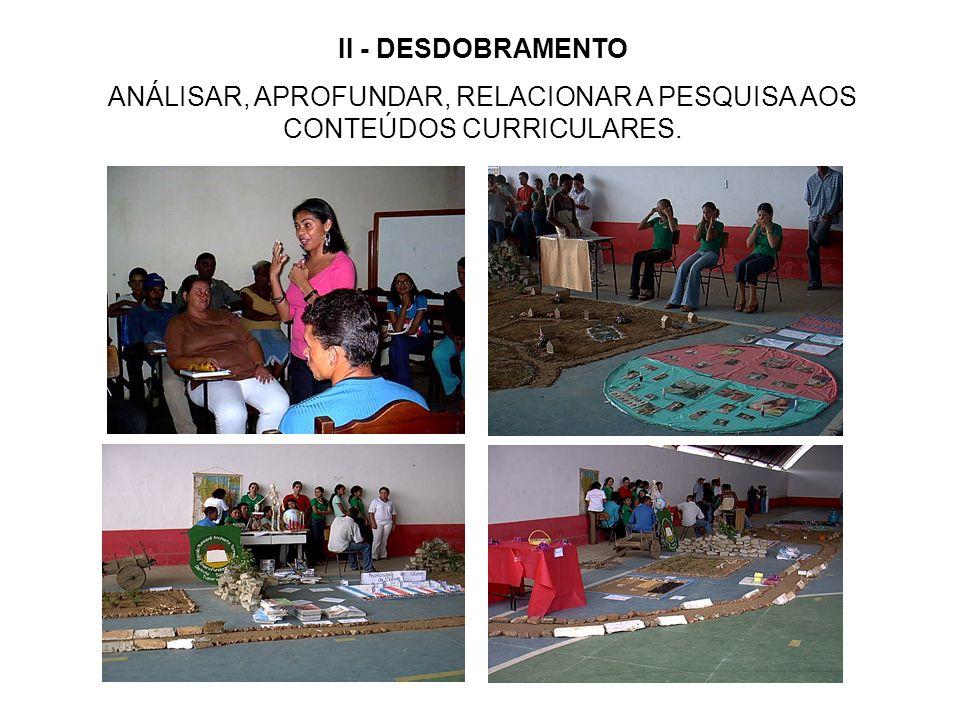 II - DESDOBRAMENTO ANÁLISAR, APROFUNDAR, RELACIONAR A PESQUISA AOS CONTEÚDOS CURRICULARES.