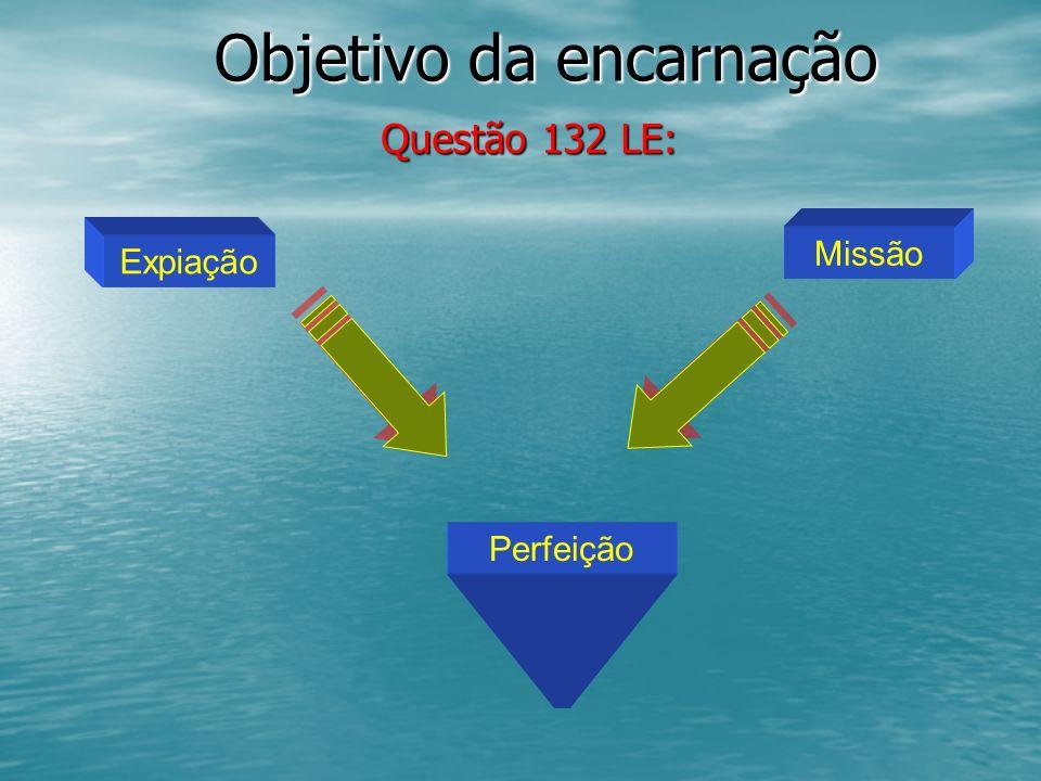 Objetivo da encarnação Questão 132 LE: Questão 132 LE: Expiação Missão Perfeição