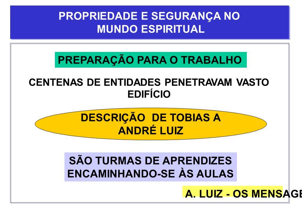 PREPARAÇÃO PARA O TRABALHO DESCRIÇÃO DE TOBIAS A ANDRÉ LUIZ CENTENAS DE ENTIDADES PENETRAVAM VASTO EDIFÍCIO SÃO TURMAS DE APRENDIZES ENCAMINHANDO-SE À