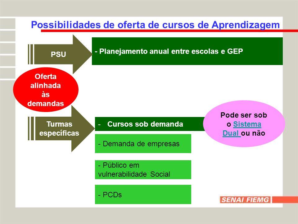Possibilidades de oferta de cursos de Aprendizagem Oferta alinhada às demandas - Planejamento anual entre escolas e GEP -Cursos sob demanda PSU Turmas