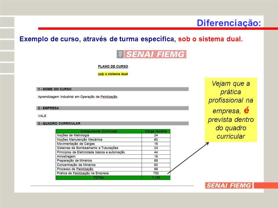 Diferenciação: Exemplo de curso, através de turma específica, sob o sistema dual. Vejam que a prática profissional na empresa, é prevista dentro do qu