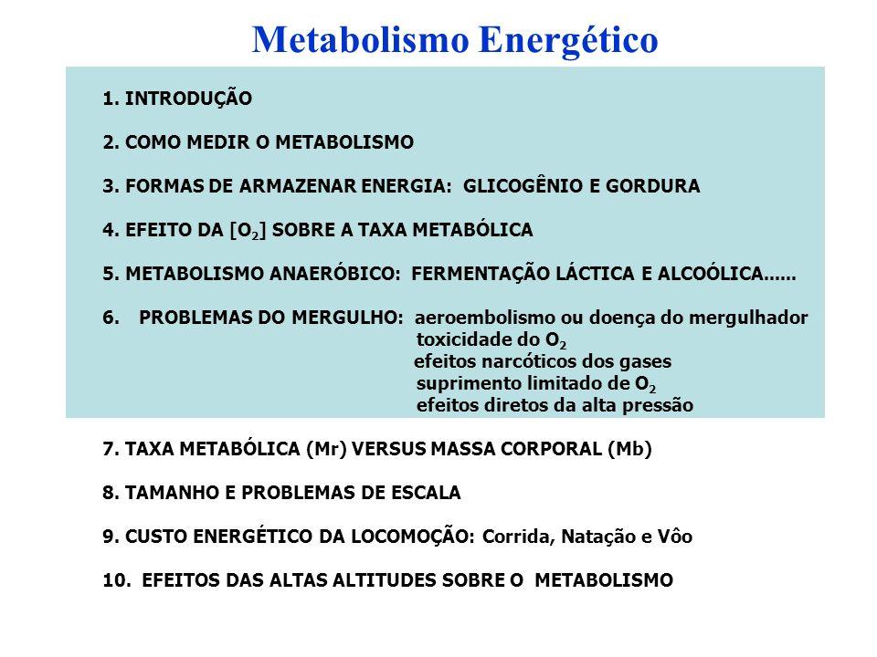 Metabolismo Energético 1. INTRODUÇÃO 2. COMO MEDIR O METABOLISMO 3. FORMAS DE ARMAZENAR ENERGIA: GLICOGÊNIO E GORDURA 4. EFEITO DA [O 2 ] SOBRE A TAXA