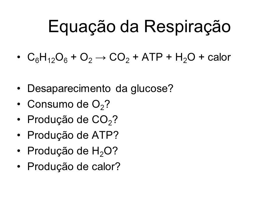 Equação da Respiração C 6 H 12 O 6 + O 2 CO 2 + ATP + H 2 O + calor Desaparecimento da glucose? Consumo de O 2 ? Produção de CO 2 ? Produção de ATP? P