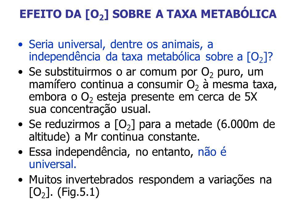 EFEITO DA [O 2 ] SOBRE A TAXA METABÓLICA Seria universal, dentre os animais, a independência da taxa metabólica sobre a [O 2 ]? Se substituirmos o ar