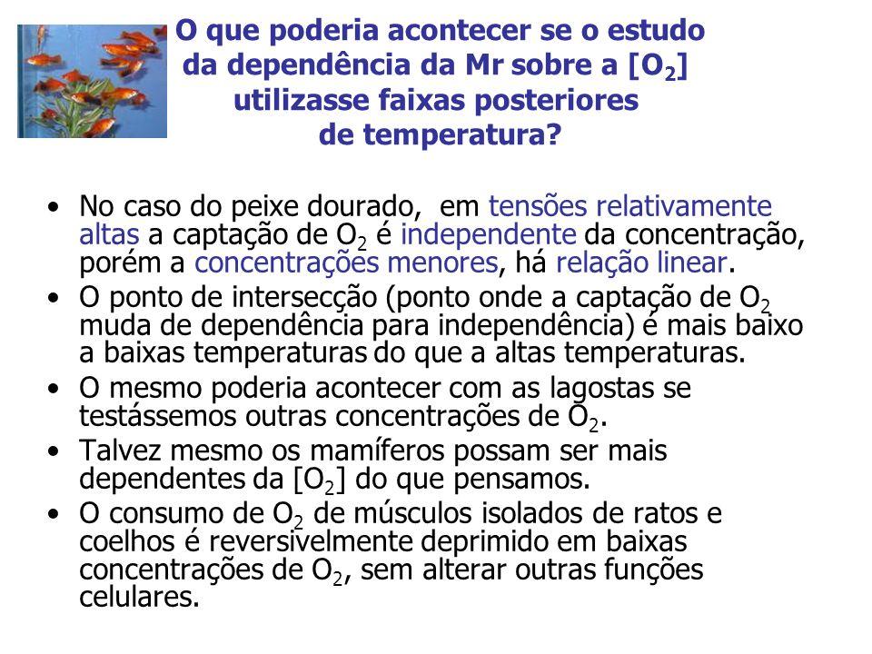 O que poderia acontecer se o estudo da dependência da Mr sobre a [O 2 ] utilizasse faixas posteriores de temperatura? No caso do peixe dourado, em ten